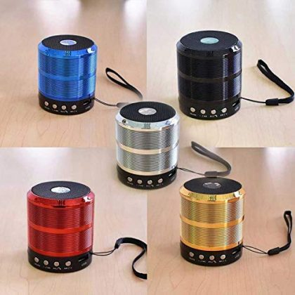 Mini Bluetooth Speaker WS-887 with FM Radio